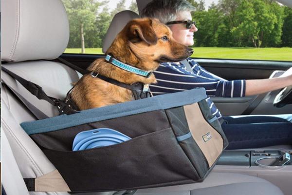 Meilleur siège auto pour chien 2021 | Comparatif